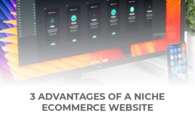 3 Advantages of a Niche Ecommerce Website